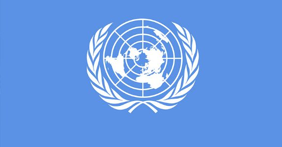 UNSC has no role in Jammu Kashmir , UN  Experts falsely accusing India