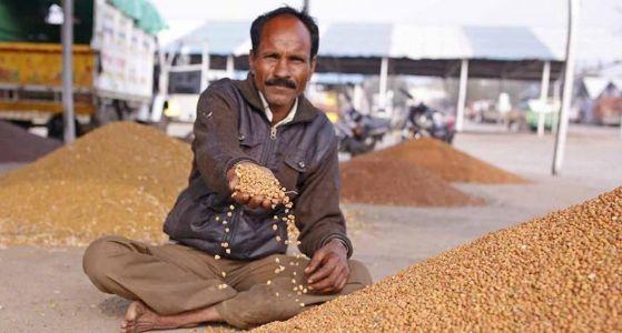FARM BILL 2020: UNCLUTTERED