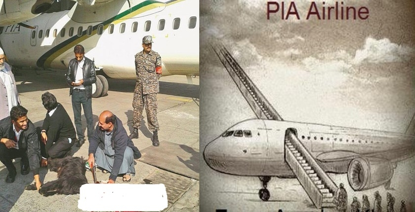 Whaaaat !! पाकिस्तान में 16 दसवीं फेल फर्ज़ी पायलट सालों से उड़ा रहे थे PIA इंटरनैशनल फ्लाइट्स, पकड़े गये